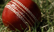 Cricket Balls Manufacturers, Exporters India